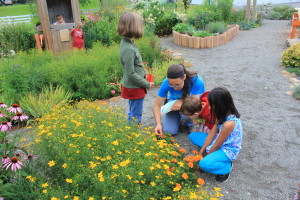 Ms. Sarah shows her campers some tiny flowers.