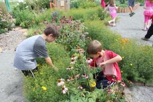 Yellow Peppers explore the children's garden.